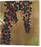 Inkberry Wood Print
