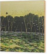 Inland Lakes Wood Print