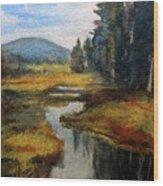 Inlet In Indian Lake Wood Print