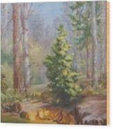 Inlet,winter's End, Mcdowell Wood Print