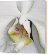 Inner Angel Wood Print