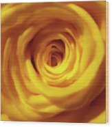 Inner Beauty Of A Rose Wood Print