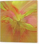 Inner Tulip Wood Print