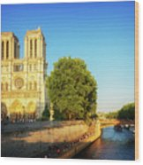 Notre Dame In Sunset Light Wood Print