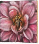 Insect - Bee - Center Of The Universe  Wood Print