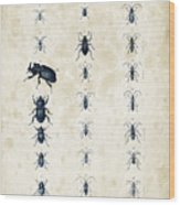 Insects - 1832 - 09 Wood Print