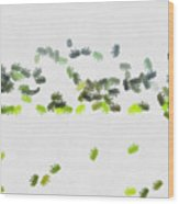 Insects Marching All Over Wood Print