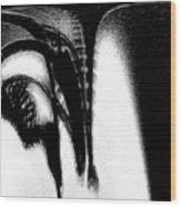 Inside A Serial Rapist Wood Print