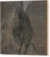 Inside Crow Wood Print