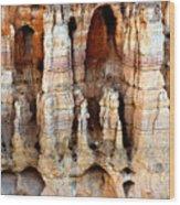 Inside Of Bryce Wood Print