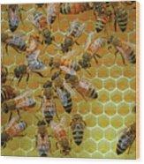 Inside the Hive Wood Print