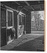 Inside The Horse Barn Black And White Wood Print