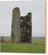 Inside The Ruins Wood Print