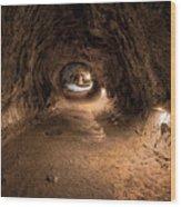 Inside Thurstons Lava Tube Wood Print