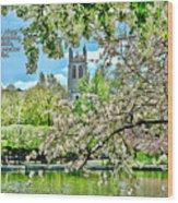 Inspirational - Cherry Blossoms Wood Print