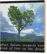 Inspirational-mother Nature Wood Print