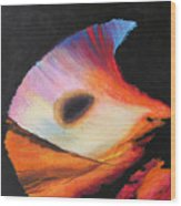 Inspire II Wood Print