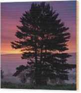 Intense Dawn Sky Over A Foggy South Amherst Wood Print