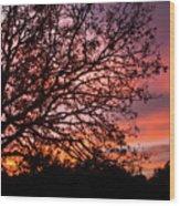 Intense Sunset Tree Silhouette Wood Print