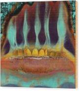 Interstice Wood Print