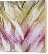 Interwoven Hues Wood Print