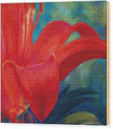 Intimate Lilly Wood Print