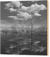 Into The Everglades Wood Print
