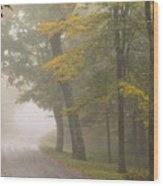 Down The Mountain, Into The Fog Wood Print