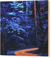 Into The Forest Of Night Wood Print