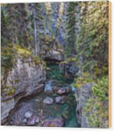 Into The Heart Of Maligne Canyon Wood Print