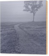 Into The Mist Bw Wood Print by Steve Gadomski