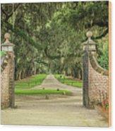 Into The Oaks Wood Print