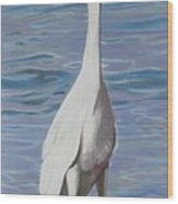 Intracoastal Sentinel   Great Egret Wood Print