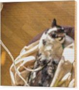 Intravenous Drip Cat Wood Print