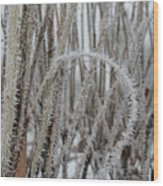 Intriguing Winter Frost Wood Print