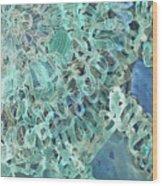Intuition Unraveled Deep Ocean Wood Print