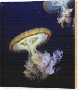 Invasion Of The Japanese Sea Nettles Wood Print