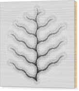 Inverted Coalescence Wood Print
