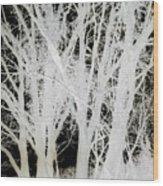 Inverted Nature Wood Print