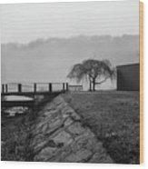 Inwood Hill Park In Fog Wood Print