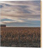 Iowa Corn Fields In The Fall Wood Print