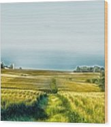 Iowa Cornfield Panorama Wood Print