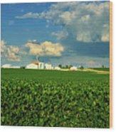 Iowa Soybean Farm Wood Print