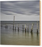 Ipperwash Beach # 3 Wood Print
