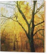 Ipswich 2 Wood Print