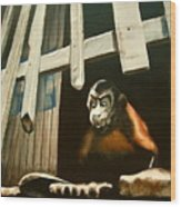 Iquitos Monkey Wood Print