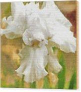 Iris 42 Wood Print