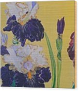 Iris Afternoon Delight Wood Print