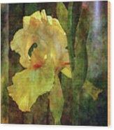 Iris And Post 6731 Idp_4 Wood Print