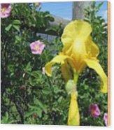 Iris And Wild Roses Wood Print